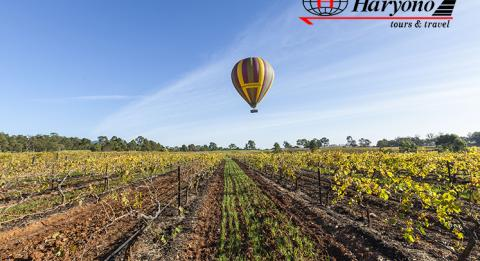 Ballooning in Hunter Valley