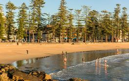 Swimmers, Manly